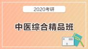 2020考研中医综合精品班