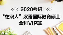 """2020考研""""在职人""""汉语国际教育硕士全科专属VIP班"""