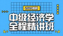 2020林肯娱乐登录测试中级经济学全程精讲班
