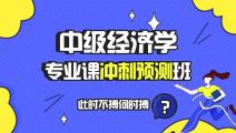 【预售】中级经济学专业课冲刺预测班