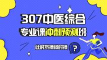 【预售】307中医综合专业课冲刺预测班