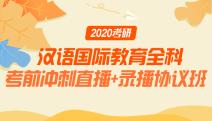 2020考研汉语国际教育全科考前冲刺直播+录播协议班